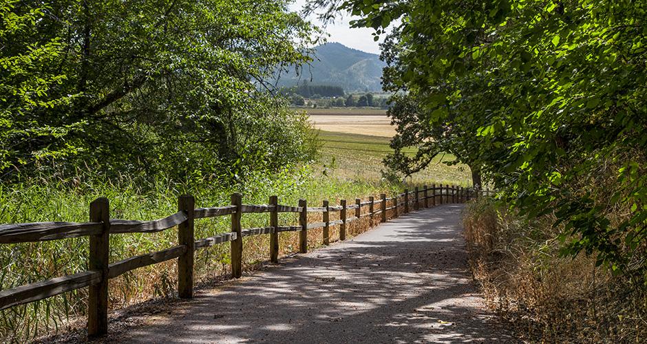 Forest Glen Park Trail